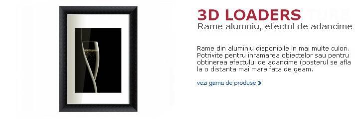 3D Loaders